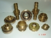 foto-113-bronz-amerkan-disli-ve-rekorlar